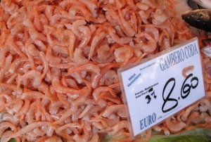 Gambero - Shrimp