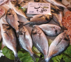 Orata - Sea Bream