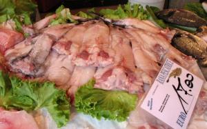 Rana Pescatrice - Angler Fish