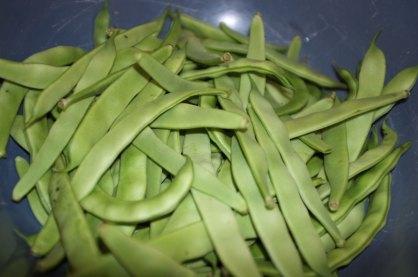 green_beans1