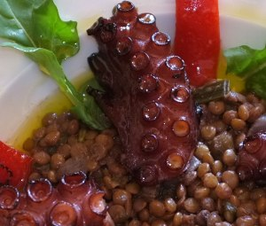 Octopus with lentils, rucola and red peppers - detail