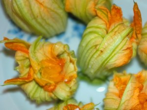 Zucchini flowers to die for!