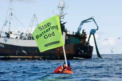 Greenpeace activists take direct action for the second time in three days to halt North Sea trawlers fishing cod towards extinction.