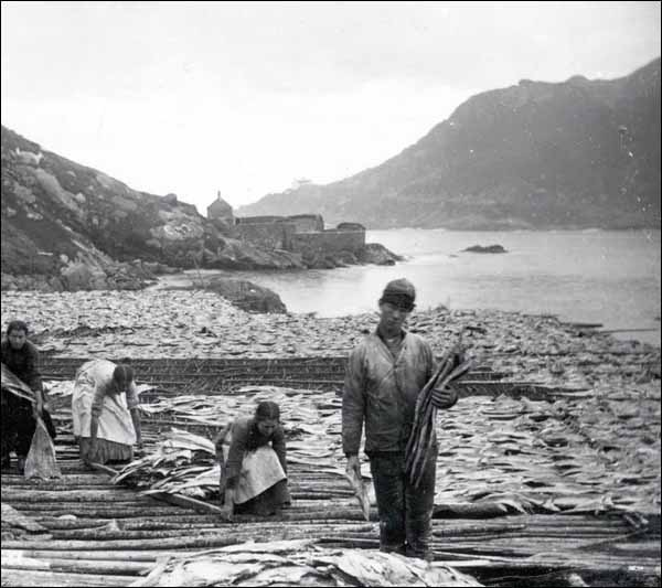 A short history of fishing cod in newfoundland panathinaeos for History of fishing