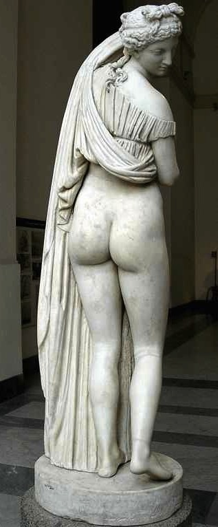 venus_kallipygos_naples