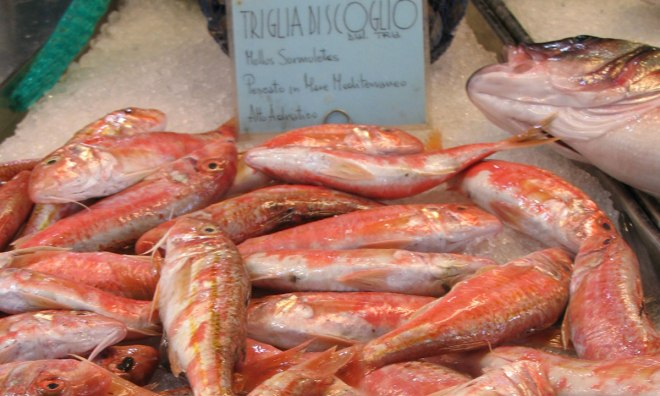 Triglia in the Rialto Fishmarket, Venice, Italia